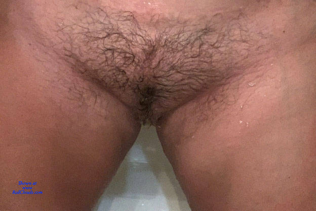 Pic #1Hairy Pussy - Bush Or Hairy, Close-ups, Pussy